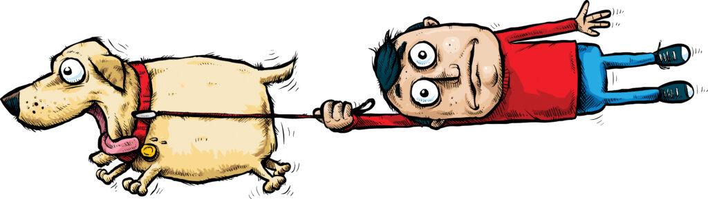 運動不足の人が犬を飼っていきなり運動は危険です【具体的な解説】
