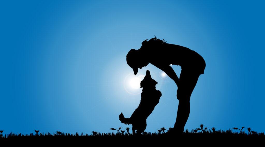 子犬の適切なトイレシート交換頻度は「3回に1度」くらい